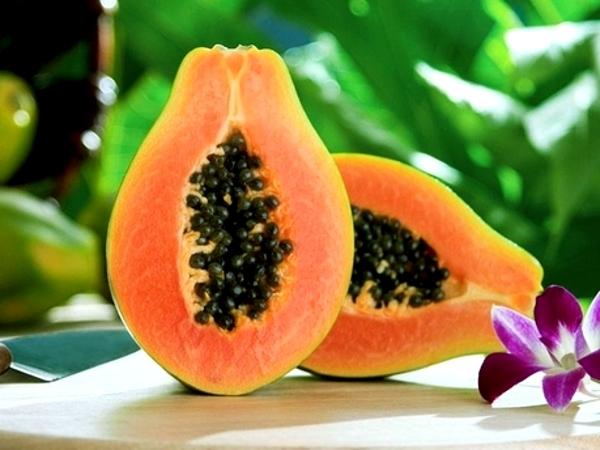 Плоды и цветок папайи