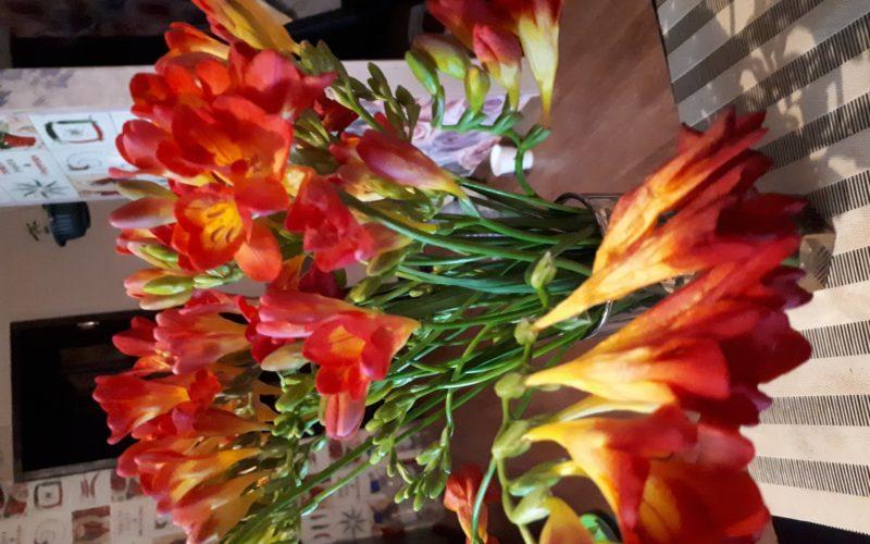 Цветы срезанные, какие листья не знаю((