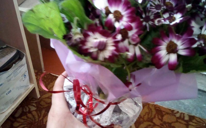 Цветок с фиолетово-белыми лепестками