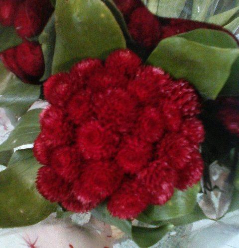 Зеленые листья с красными колючими цветами и вкусным ароматом