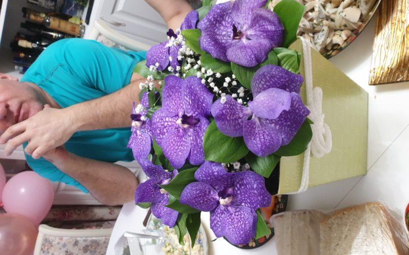 Растение с фиолетовыми цветками