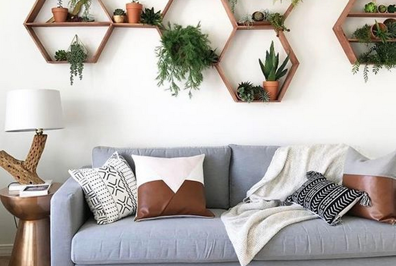 Как очистить воздух в квартире: растения, очищающие воздух